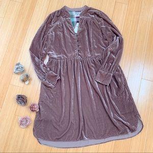 NWT!  Anthropologie Holding Horses velvet dress, S